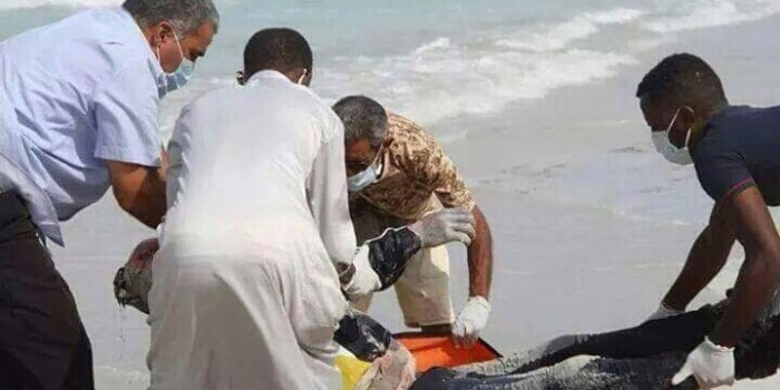 Bodies Wash up on Libyan Shore