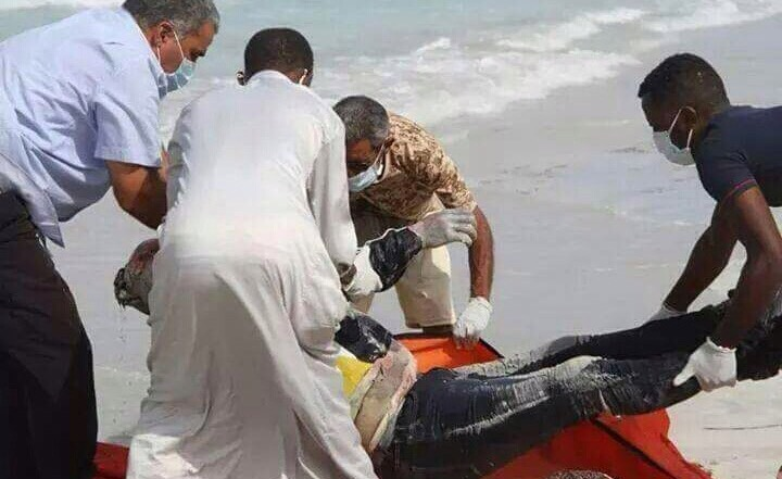 Stock Photo: A recovery operation when dozens of bodies washed up on the shores of Garabulli in March.